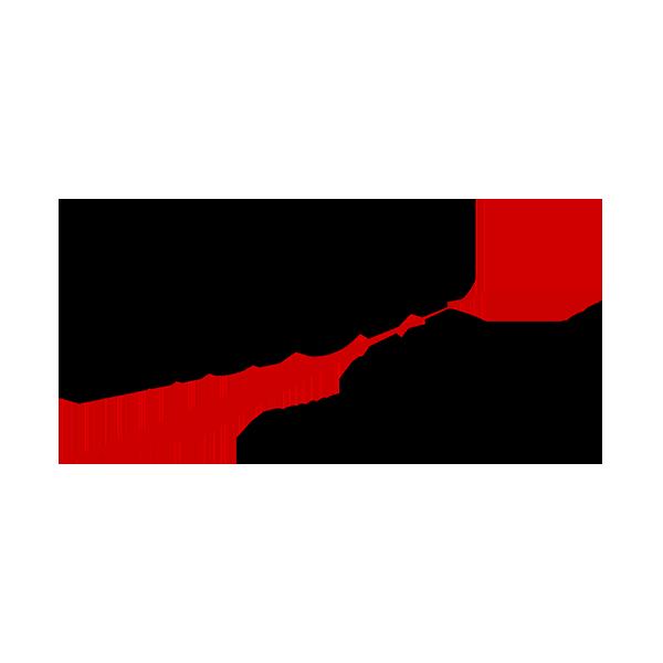 servizi linkedin enersys